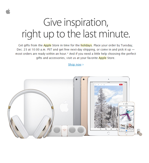 newsletter_natale_esempio_apple.png